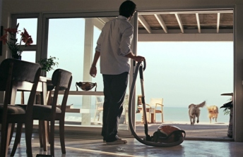 Electrolux / Dogs