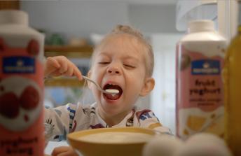 Norrmejerier / Yoghurt